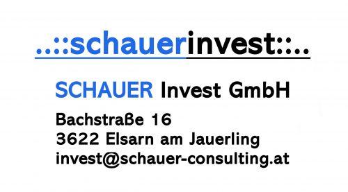 SchauerConsulting_invest_Logo